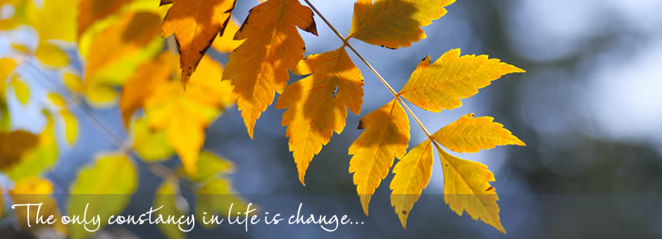 The only constancy in life is change